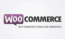 Instalação e Gerência de lojas virtuais com WordPress WooCommerce e design responsivo - MX