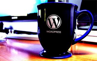 wp2 - Curso de WordPress vol. 2 - MX Masters